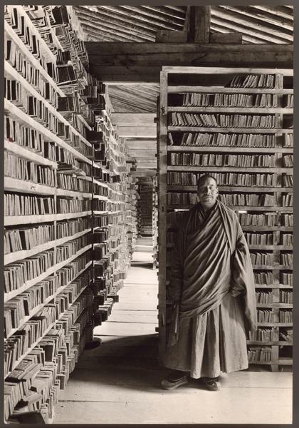 Monaco tibetano in biblioteca