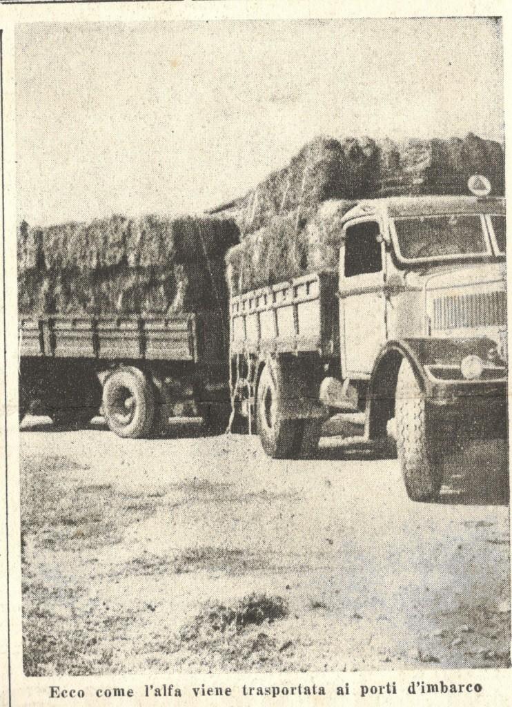 da «L'Azione Coloniale»,Numero Speciale Autarchico Fuori Serie, Giovedì 18 Gennaio 1940, Anno X numero 3 bis, p.4