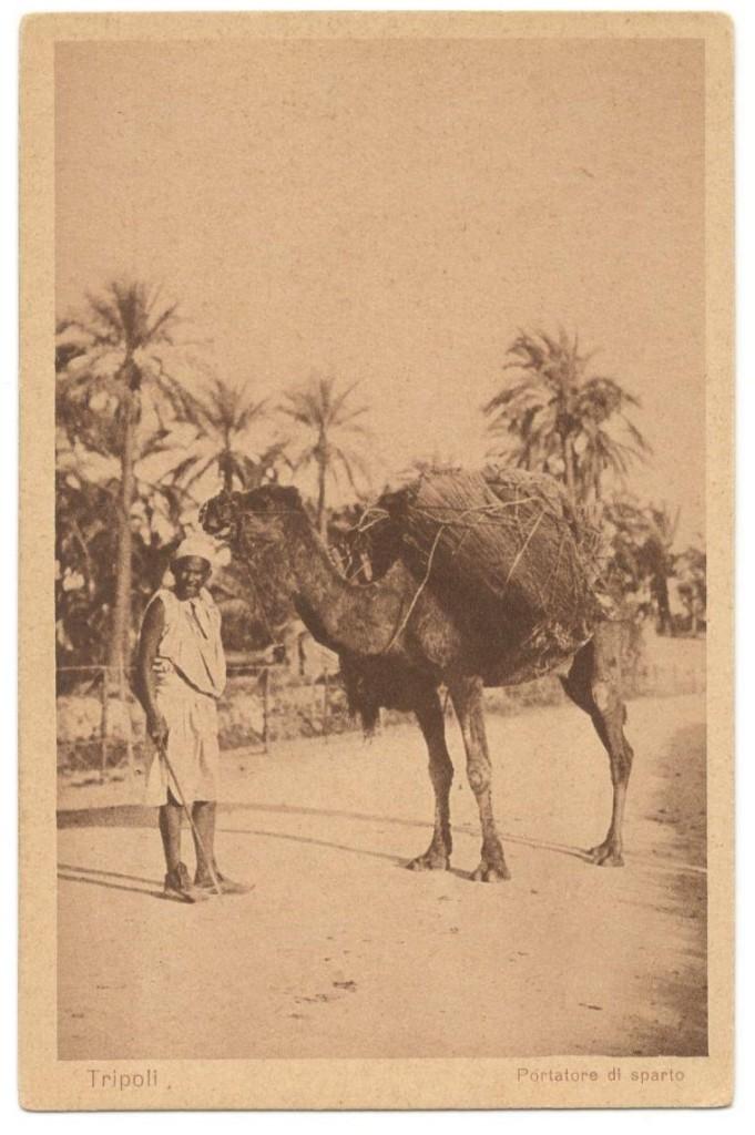 8. Tripoli, portatore di sparto, cartolina, Scialom Haggiag Editore, collezione privata