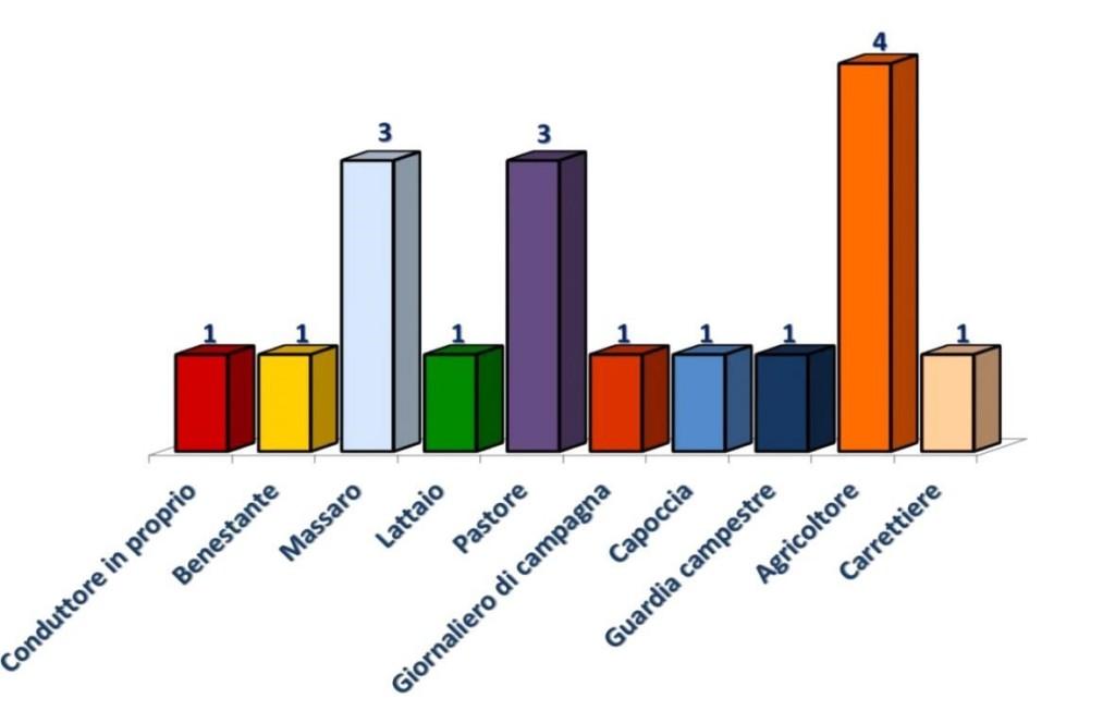 Grafico realizzato dagli alunni dagli alunni Silvia Campanale, Giorgia Mangano, Elisa Papagni e Gabriele Luigi Sparapano