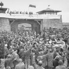 La memoria del ritorno. Il dopoguerra degli ex deportati politici nel Friuli Venezia Giulia