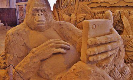 Dal gorilla ammaestrato alla società 5.0