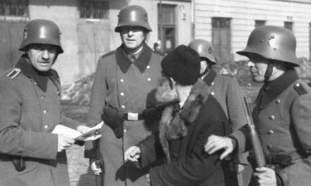 «Le difficoltà del comprendere»: la Shoah come genocidio, tra storia e microstoria